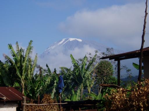 Mt Kili